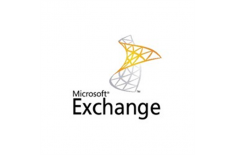 Microsoft Exchange Online Plan 1 Monthly Subscriptions-Volume, License, 1 user(s)